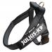 IDC® Belt Color&Gray® - velikost MINI-MINI