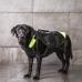 IDC® večnamenski pasji telovnik 3v1 - velikost L